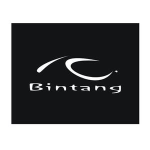 Profile picture for BINTANG TV