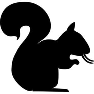 Profile picture for Tusk of Squirrel