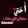 ايمان المصري