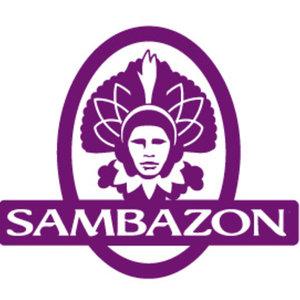 Sambazon Smoothies Archives - Sweet Potato Bites