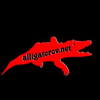 Alligator-studio