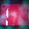 Noctiluca Film