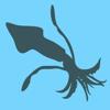 Squid Dance