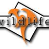 Wildlife at BTBF