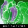 "Juan Salgueiro aka ""Salix Salom"""