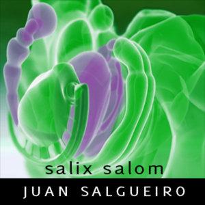 "Profile picture for Juan Salgueiro aka ""Salix Salom"""