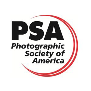 Profile picture for PSA