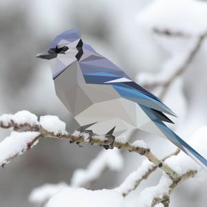 project snowbird on vimeo
