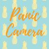 Panic Camera