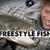 Freestyle fish - fsFly