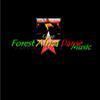 Forest Africa Danse
