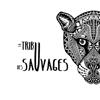 La Tribu des Sauvages
