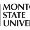Montclair State Filmmakers