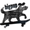 Big Pup Film