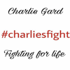 #charliesarmy #charliesfight