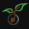 Seeds Video
