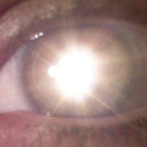 Profile picture for Reimagine Cinema