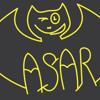 ASAR 73