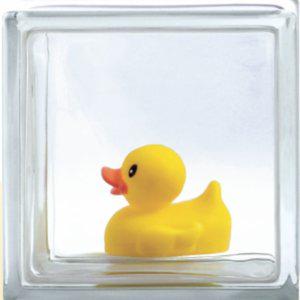 Profile picture for glass blocks