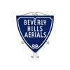 Beverly Hills Aerials