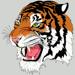 Mr.Tigre