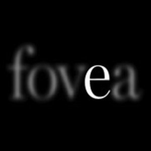 Profile picture for fovea exhibitions