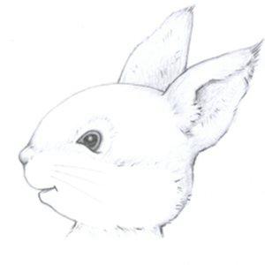Profile picture for Cheryl