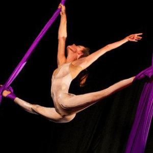 Profile picture for Aislinn:Circus Artist