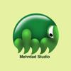 Mehrdad_Studio