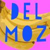 Delnaz Moazami