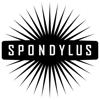 Spondylus Studio