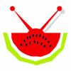 Melon's Video Productions