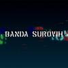 Banda Surovih