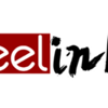 Feelink