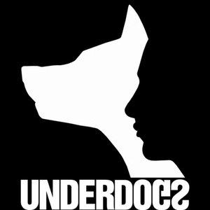 Profile picture for UnderDogs Animation Studio