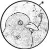 Kabir Serif