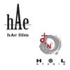 hAe film / HOL studio