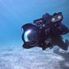Down Under Aquatic Imaging