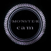 Monster Cam