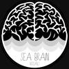 Greg Brewer - Sea Brain Visuals