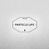 Particle Life