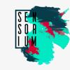 SENSORIUMPictures
