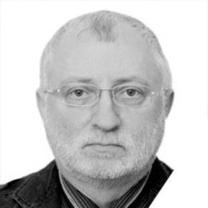 Profile picture for Vladimir Braginsky