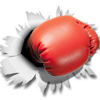 Ronald Johnson Boxer