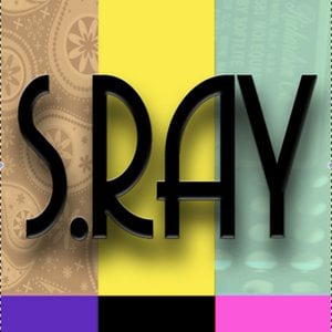 Profile picture for S.Ray Vision