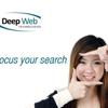 Deep Web Technologies