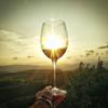 Social Vineyards