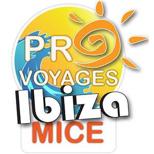 Profile picture for Incentive Ibiza