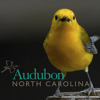 Audubon North Carolina