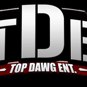 Profile picture for TDE